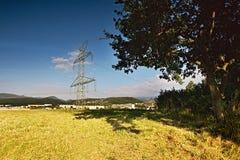Pilone e grande albero nella priorità alta sulla cima della collina del vrch di Bystricky vicino alla città Kadan nella mattina d Immagini Stock