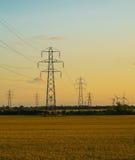 Pilones de la electricidad en campo de la cebada Imágenes de archivo libres de regalías