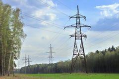 Pilones de la potencia en un bosque del verano Imagen de archivo
