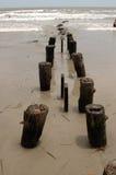 Pilones del embarcadero del océano Fotografía de archivo libre de regalías