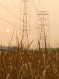 Pilones y líneas de la electricidad en la puesta del sol Imágenes de archivo libres de regalías