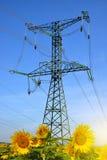 Piloni ad alta tensione di elettricità Fotografia Stock Libera da Diritti