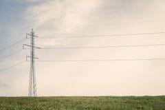 Piloni alti su un campo verde Immagine Stock