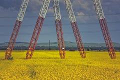 Piloni del palo di potere nel giacimento del seme di ravizzone Immagine Stock Libera da Diritti