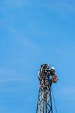 Piloni della linea elettrica e di elettricità Fotografia Stock