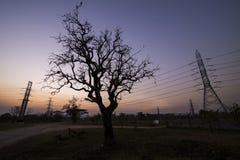 Piloni di elettricità della siluetta Immagine Stock Libera da Diritti