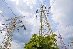 Piloni di elettricità nel campo dell'orzo Immagine Stock