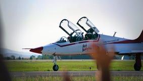 Pilot Obrazy Royalty Free