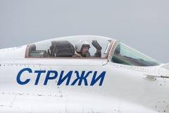 Pilot Lizenzfreie Stockfotos