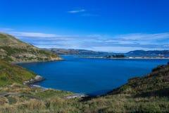 Pilot Beach Otago Peninsular Royaltyfri Foto