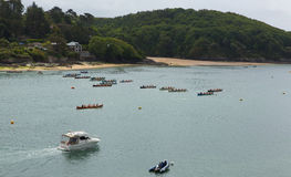 Pilot Gig Racing rowing event at Salcombe Devon England uk on Sunday 31st May 2015 Royalty Free Stock Photography