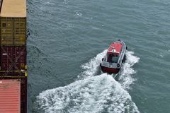 Pilot- lämna skeppet, pilot på pilot- stege royaltyfri foto