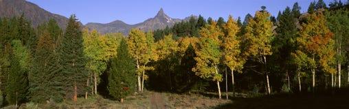 Pilot Mountain Royalty Free Stock Photo