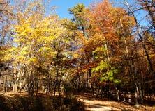 Pilot Mountain State Park Lizenzfreie Stockbilder