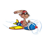 Pilot rabbit Royalty Free Stock Photos