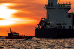 Pilot ship catches big container ship. During hot sunset, Latvia royalty free stock photos