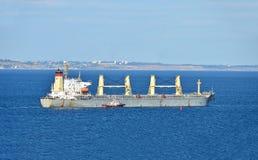 Pilot som hjälper det bulk lastfartyg Royaltyfri Foto