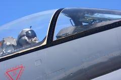 Pilota da combattimento fotografia stock libera da diritti