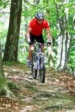 Piloter aîné dans la forêt avec le vélo de montagne Images stock