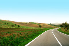 Piloter dans une route verte Images libres de droits