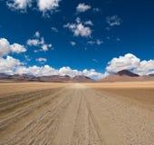 Piloter la route de désert Images libres de droits