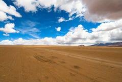 Piloter la route de désert Image libre de droits