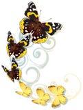 Piloter les papillons jaunes et bruns illustration stock