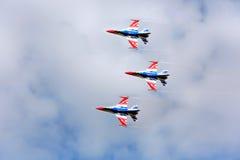 Pilotes acrobatiques aériens d'équipe de F-16 Gripen et du 1er août Images stock