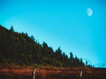 Pilotez-moi à la lune Photo libre de droits
