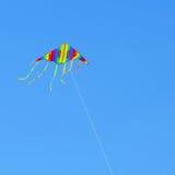 Pilotez un cerf-volant Photos libres de droits