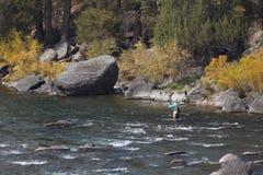 Piloti il pescatore nel Wyoming occidentale fotografie stock
