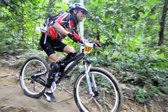 Piloto da bicicleta de montanha Imagens de Stock Royalty Free
