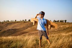 Piloto del niño del muchacho con las alas en la naturaleza Imagen de archivo libre de regalías