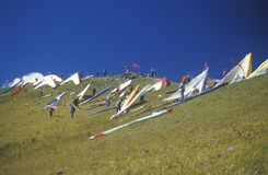 Pilots on slope during Hang Gliding Festival Royalty Free Stock Image