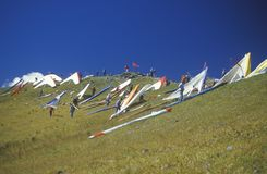 Pilots on slope during Hang Gliding Festival, Telluride, Colorado Royalty Free Stock Images