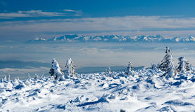Pilsko, Poland. Winter on the Pilsko ( Poland ) mountain stock images