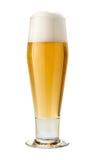 Pilsner classique (bière) d'isolement images libres de droits