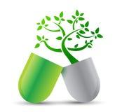 Pilule avec des ingrédients de nature Images stock