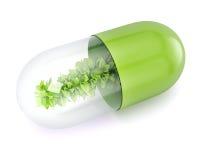 Pilule de fines herbes Photographie stock libre de droits
