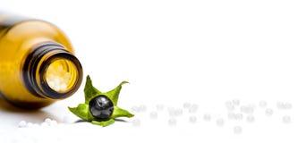 Pilules d'homéopathie avec la belladone d'isolement photo stock