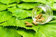 Pilules dans le pot au-dessus des feuilles vertes Vitamine saine Image stock