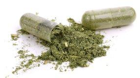 Pilules de capsule de Moringa sur le fond blanc photos stock