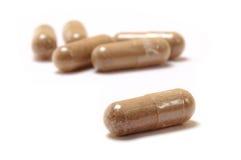 Pilules de fines herbes de supplément Photos libres de droits