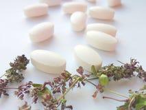 Pilules de phytothérapie avec les herbes naturelles sèches sur le fond blanc Concept de phytothérapie et de suppléments diététiqu photo stock