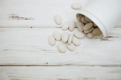 Pilules de vitamines pour des animaux familiers Images stock