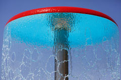 Pilz im Wasserpark Stockfoto