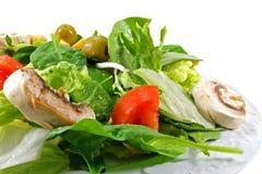 Pilz-Salat Stockbild