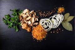 Pilz soupSet mit Frühlingszwiebeln und Gewürzen Stockfoto
