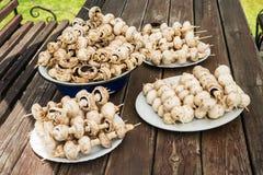 Pilz spießt bereites zum Grill auf Lizenzfreie Stockfotos