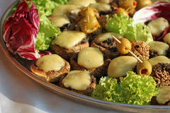 Pilz und Käse Stockbild